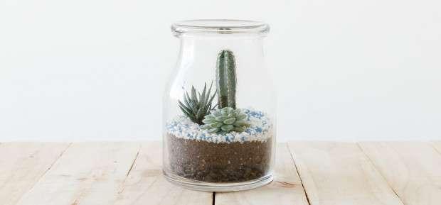 Recycler ses petits pots en verre