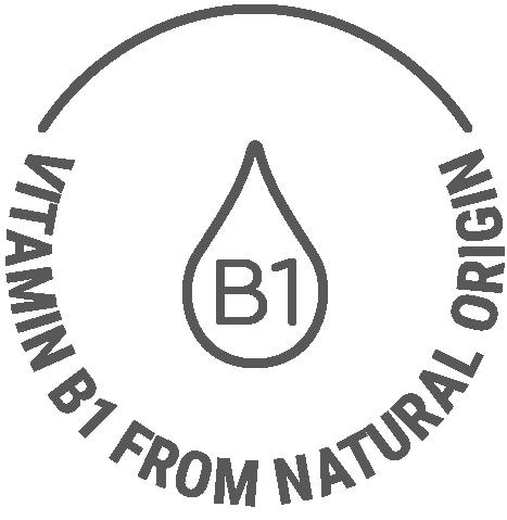 Natural origin vitamin B1